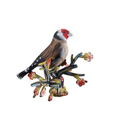 bird31