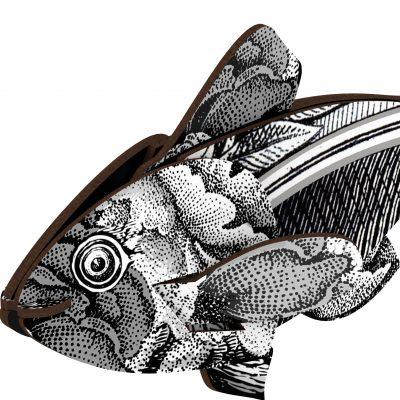 fishs403_a